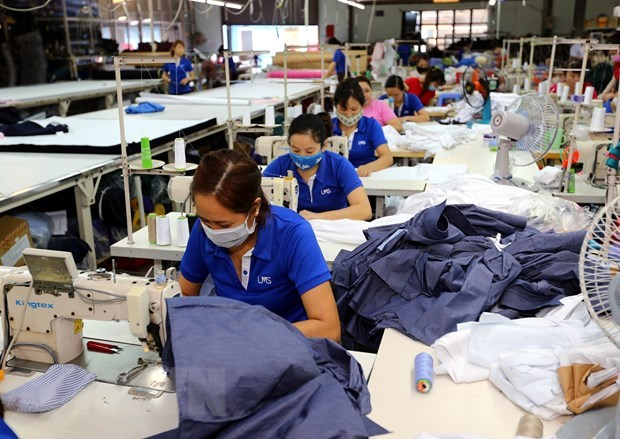 ILO welcomes new Labour Code hinh anh 1
