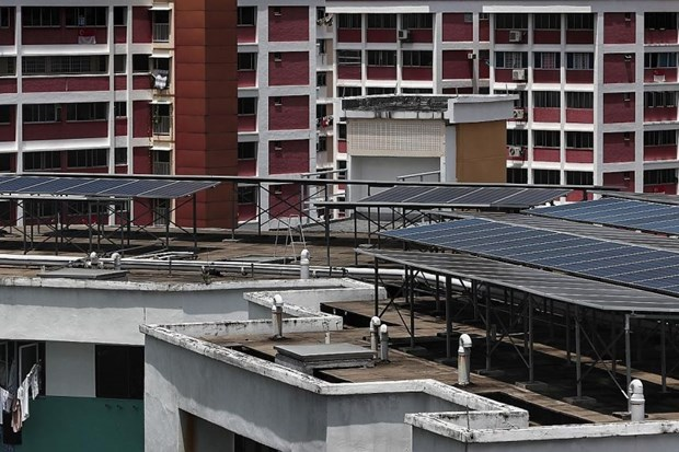 Singapore promotes clean energy development hinh anh 1