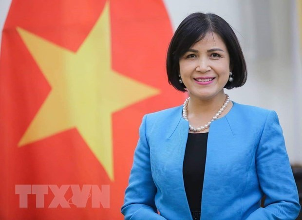 Vietnam lauds India's growth at WTO trade review hinh anh 1