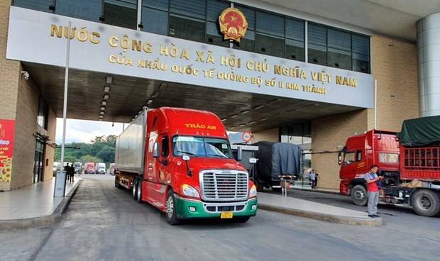 Import-export value through Lao Cai's border gates declines due to COVID-19 hinh anh 1