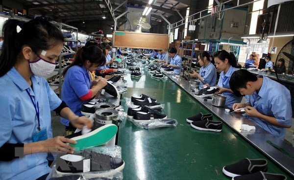 Difficult year ahead for leather-footwear sector: experts hinh anh 1