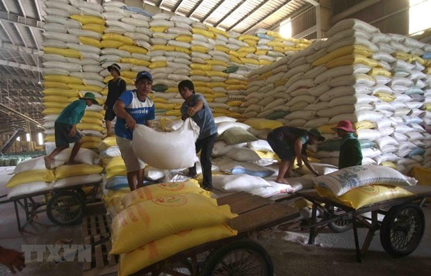 Vietnam to export 1,600 tonnes of rice at high price to Singapore, Malaysia hinh anh 1