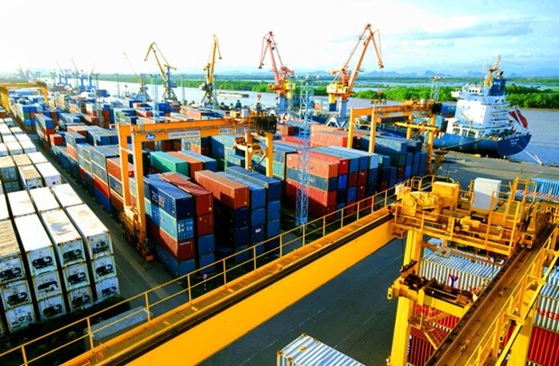 Exporters complain as cost for containers skyrockets hinh anh 1