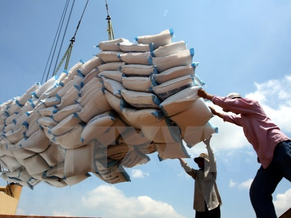 Q1 rice export outlook remains promising hinh anh 1