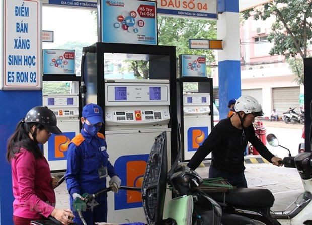 Petrolimex's profit falls to five-year low hinh anh 1