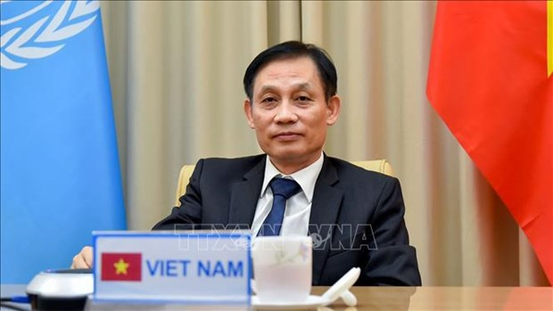 Vietnam gains breakthrough diplomatic success as UNSC member: official hinh anh 1