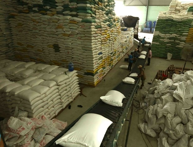 Total of 205 traders allowed to export rice hinh anh 1