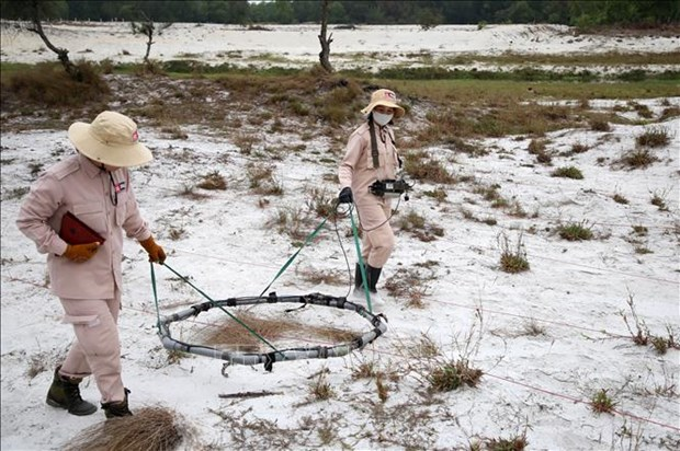 Quang Tri targets 3,000ha of land freed from UXO each year hinh anh 1