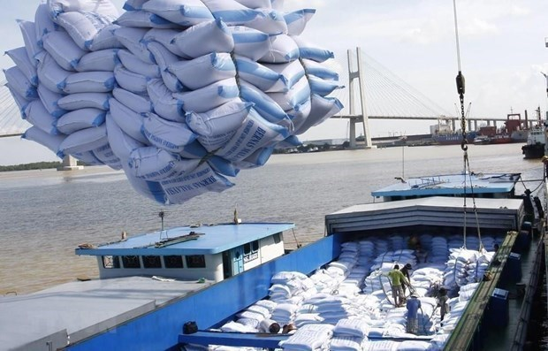 First batch of Vietnamese rice exported to UK under UKVFTA hinh anh 1