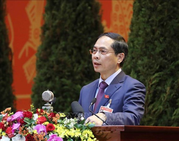 Diplomacy helps create favourable environment for national development: official hinh anh 1