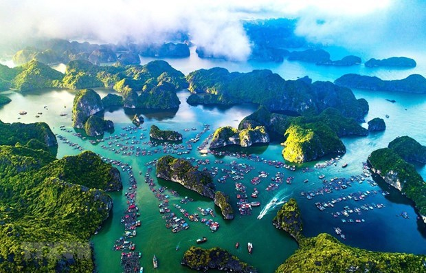 Ha Long Bay-Cat Ba Archipelago to seek world heritage recognition hinh anh 1