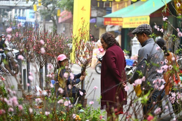 Hanoi postpones many cultural activities due to COVID-19 hinh anh 1