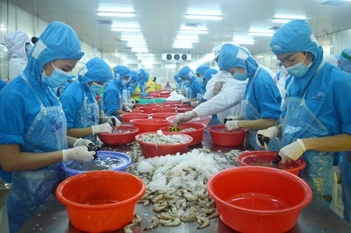 Ben Tre targets 6.23 pct. in export growth this year hinh anh 1