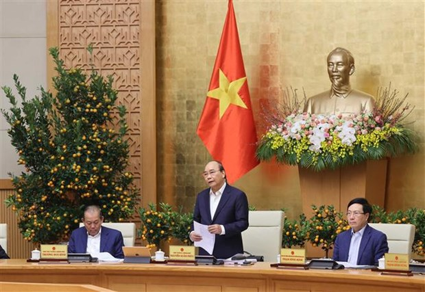 Gov't seeks ways to contain COVID-19 outbreaks, care for people during Tet hinh anh 1