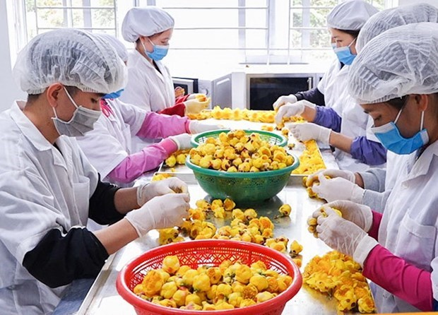 Enterprises vow to ensure sufficient goods during Tet: Ministry hinh anh 1