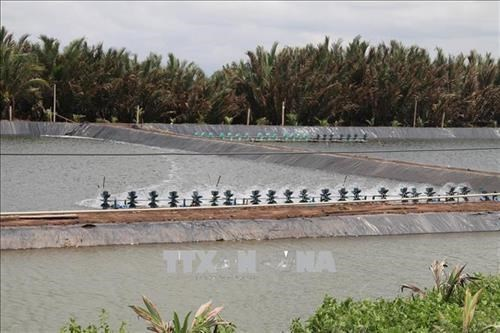 Tra Vinh to expand aquaculture area by 2,500 hectares to 2030 hinh anh 1