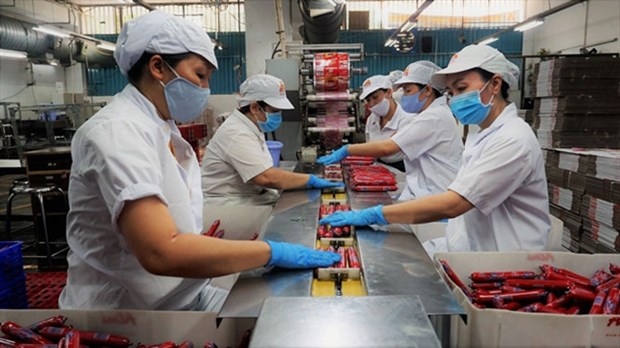 Food supplies, stable prices ensured for Tet holiday hinh anh 1
