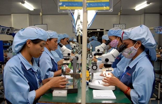 Da Nang developing supporting industries hinh anh 1