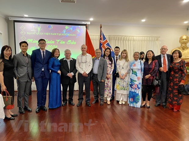 Diplomatic agencies in Australia, Italy, Russia hold Tet gatherings with OVs hinh anh 1