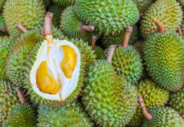 Malaysian durian products enter Japanese market hinh anh 1