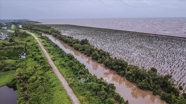 Measures needed to make Mekong Delta adaptive to climate change hinh anh 1