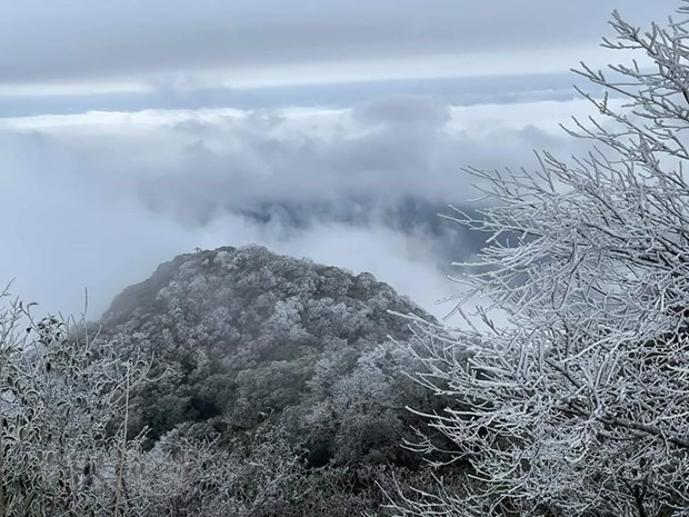 Short cold spell causes rains in northern, north-central regions hinh anh 1