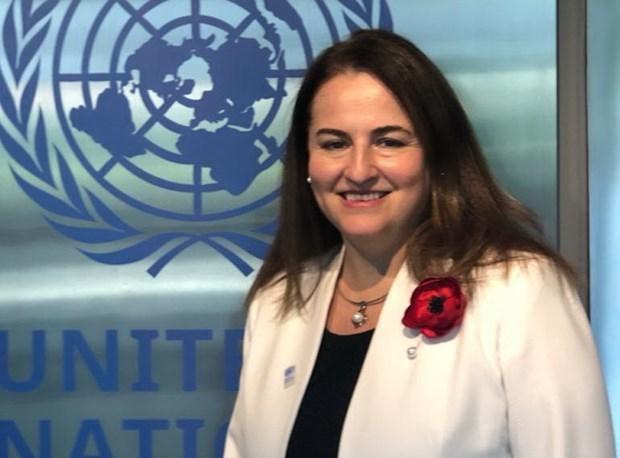 Vietnam makes good progress in gender equality: UN Women representative hinh anh 1