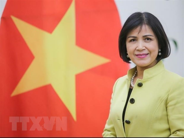 Vietnam supports South Centre's role in promoting cooperation between developing countries hinh anh 1