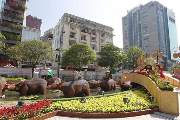 Nguyen Hue Flower Street uploaded online for first time hinh anh 1