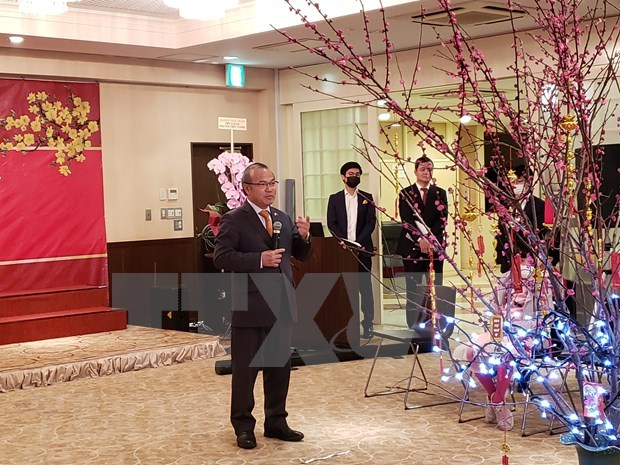 Vietnamese embassies celebrate Tet in Malaysia, Japan hinh anh 2