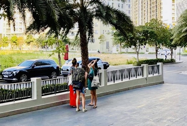 HCM City sees sharp fall in number of tourists hinh anh 1