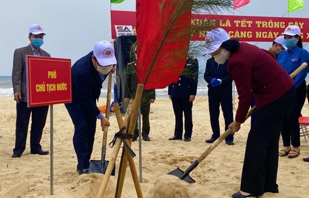 Vice President joins tree-planting festival in Quang Binh hinh anh 1