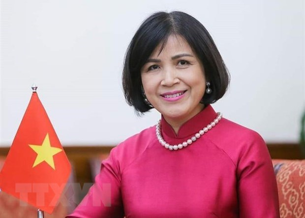 Vietnam wants to continue boosting trade ties with Myanmar: Ambassador hinh anh 1