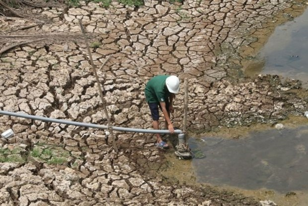 Mekong Delta takes measures against saltwater intrusion hinh anh 1