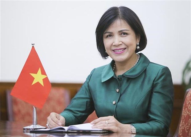 Vietnam supports UNCTAC future priorities hinh anh 1