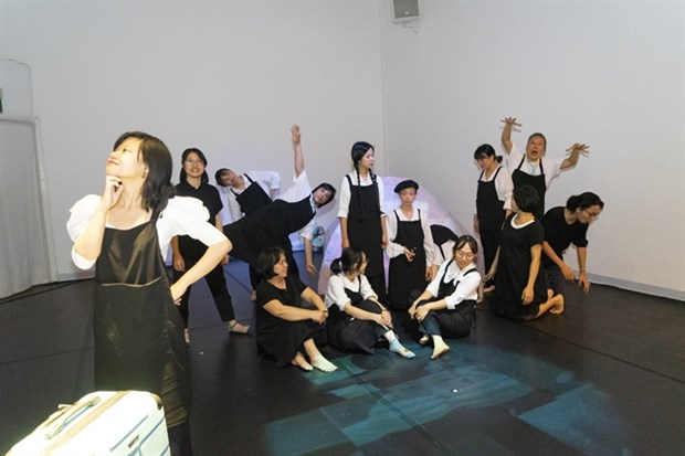 Project promotes young artists and cultural centres hinh anh 1