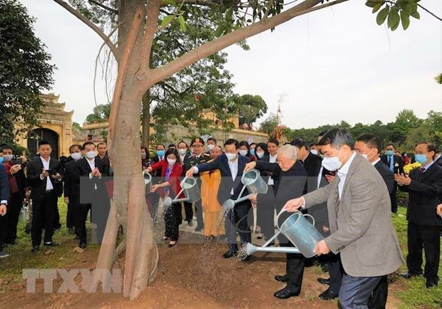 Hanoi launches tree-planting festival on New Year of Bufallo hinh anh 1