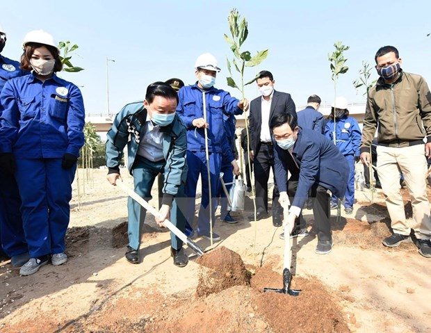 Hanoi launches tree-planting festival on New Year of Bufallo hinh anh 3