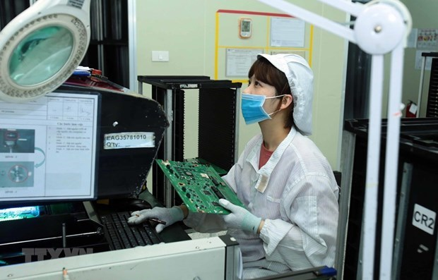 High-quality workforce crucial for Mekong Delta hinh anh 1