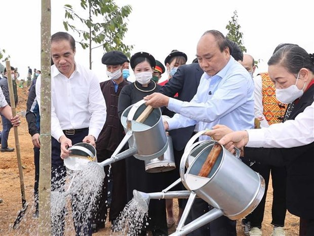 Prime Minister launches tree planting campaign in Tuyen Quang province hinh anh 1