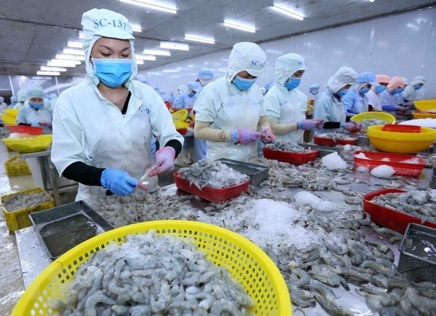 Aquatic product exports forecast to reach 9.4 billion USD in 2021 hinh anh 1