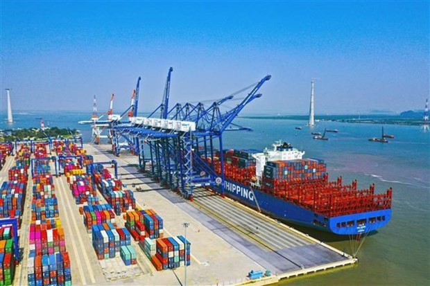 Cargo throughput at sea ports posts positive growth in January hinh anh 1
