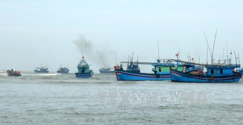 Ba Ria-Vung Tau to get tougher on illegal fishing in foreign waters hinh anh 1