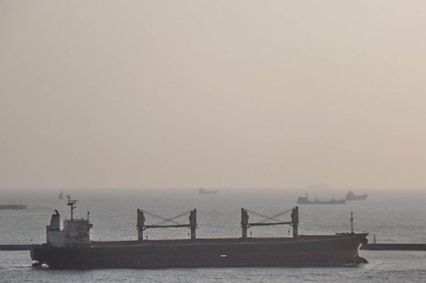 Foreign sailors anchored at Vung Tau test positive for coronavirus hinh anh 1