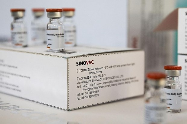 First batch of Sinovac vaccine arrives in Singapore, but it is not approved yet hinh anh 1