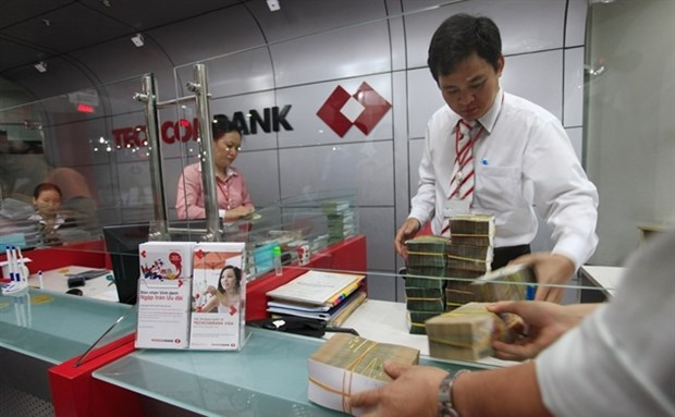 Credit market share of private banks rise hinh anh 1