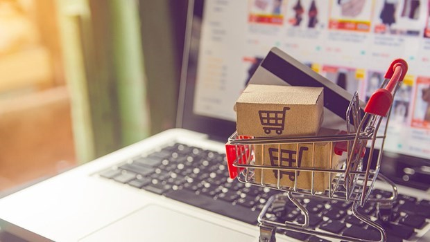 E-commerce continues to thrive amid pandemic hinh anh 1