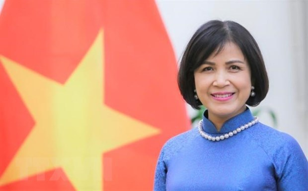 Vietnam joins WTO negotiations on fisheries subsidies hinh anh 1
