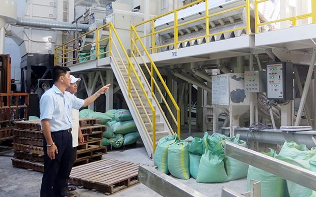 Vinh Long presses ahead with sustainable production, consumption hinh anh 2