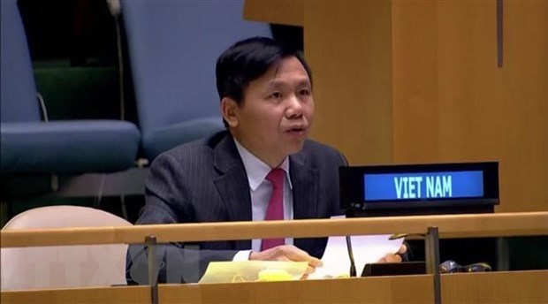 Vietnam supports UNMISS's activities: Ambassador hinh anh 1